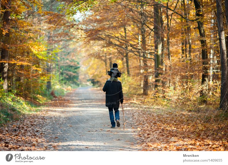 Human being Child Nature Man Forest Adults Life Love Autumn Boy (child) Family & Relations Group Going Together Hiking Infancy