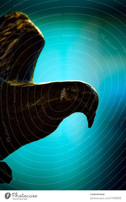 Blue Animal Bird Metal Background picture Flying Aviation Floor covering Peace Hind quarters Wing Statue Symbols and metaphors Pigeon Beak Iron