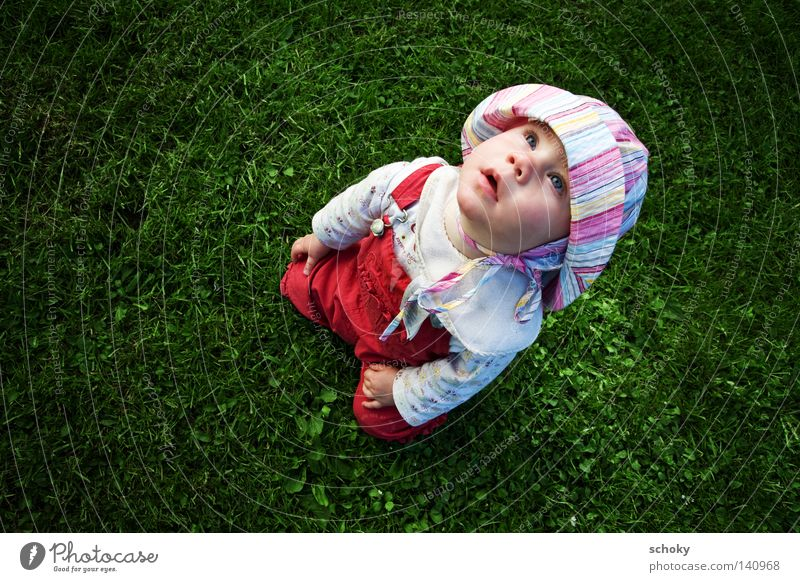 Child Girl Green Red Summer Meadow Style Grass Longing Infancy Cute Toddler Upward Marvel Landscape format