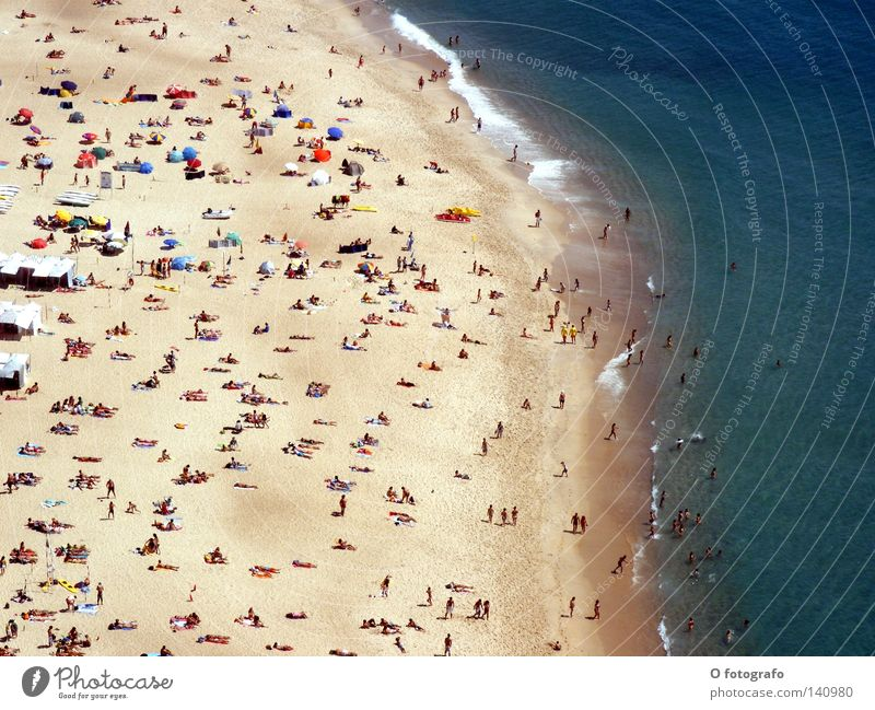 Human being Water Ocean Summer Beach Coast Sunbathing Portugal Thirst Nazaré Sun's position