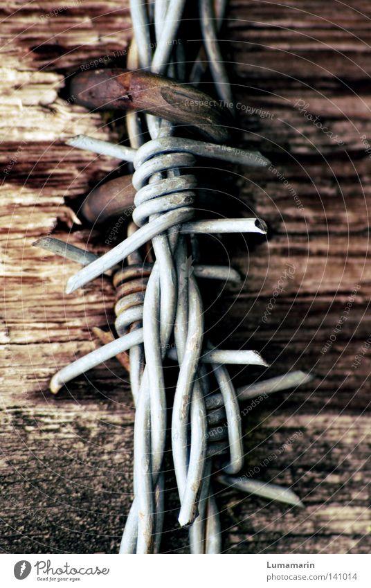 attachment Fence Border Wood Barbed wire Wire Checkmark Eyelet Reticular Bracket Compulsion Splinter Broken Hard Demanding Thorny Dangerous Detail Pole Metal