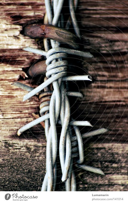 Wood Metal Feasts & Celebrations Closed Dangerous Broken Circle Point Fence Border Wire Hard Pole Thorny Knot Checkmark