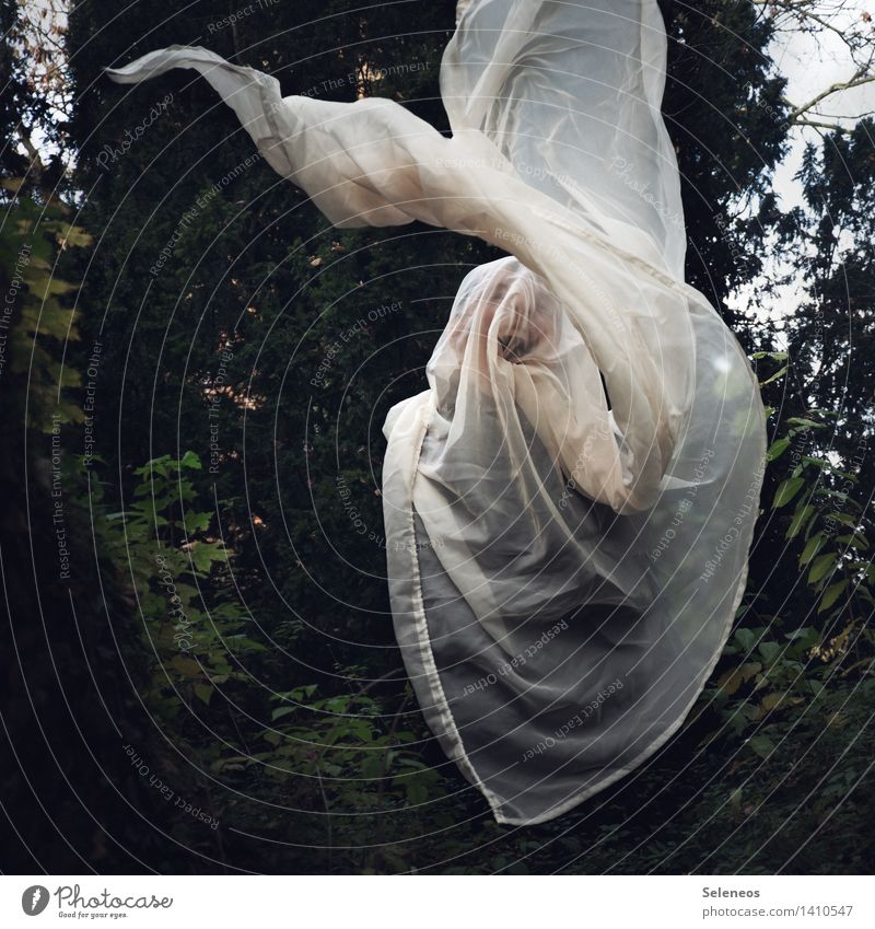 boo Human being Face 1 Garden Park Forest Creepy Fear Horror Fear of death Ghosts & Spectres  Colour photo Exterior shot
