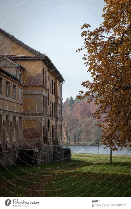 Nature Old Tree House (Residential Structure) Environment Wall (building) Architecture Autumn Building Wall (barrier) Garden Lake Facade Flat (apartment) Park