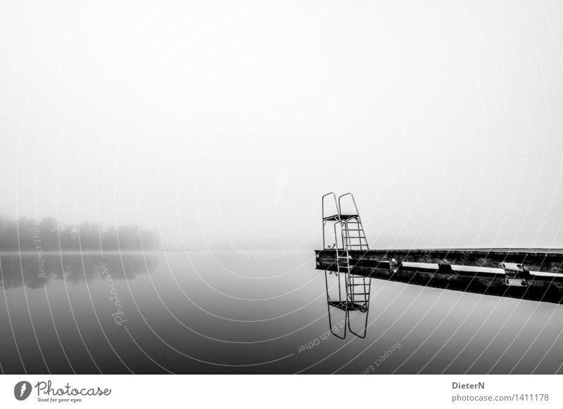 Water White Tree Landscape Black Autumn Gray Lake Fog Lakeside Swimming pool Footbridge Springboard