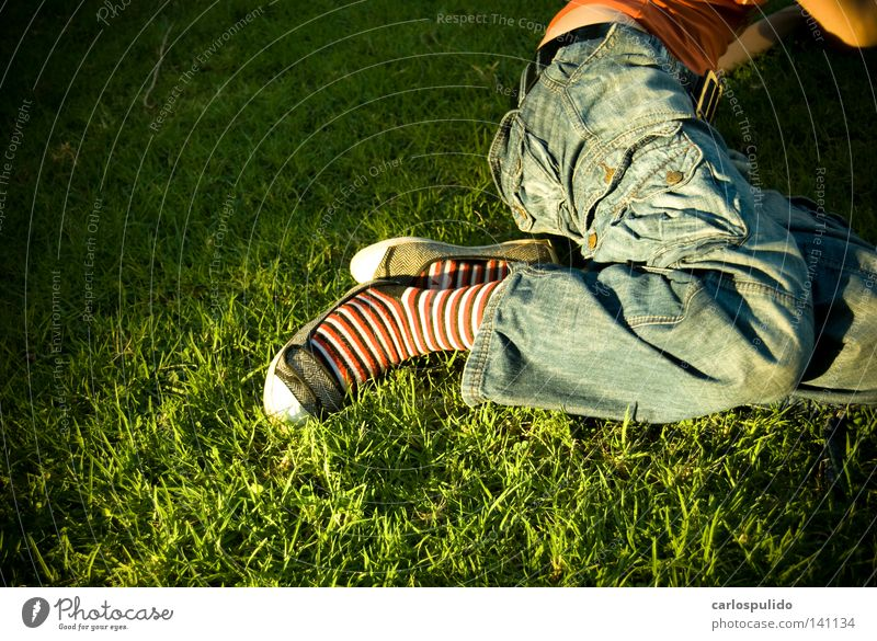 supergrass Spring Grass cesped mujer chica pies Legs piernas Park parque