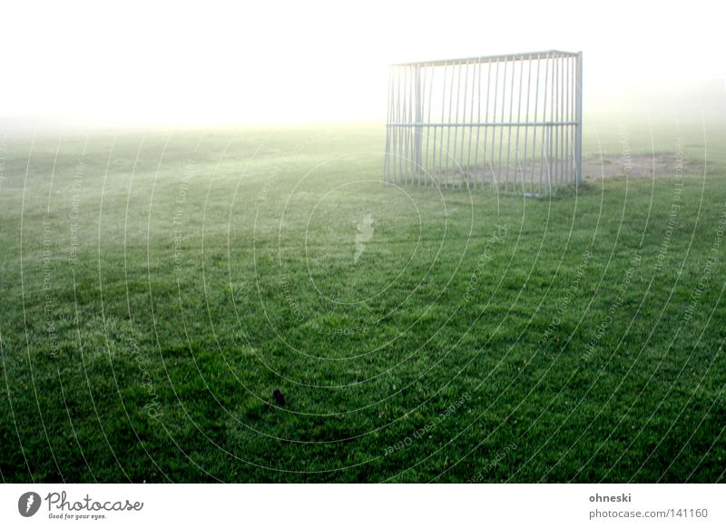 Calm Loneliness Sports Snow Playing Soccer Bright Fog Drops of water Empty Hope Goal Dew Awareness Football pitch World Cup