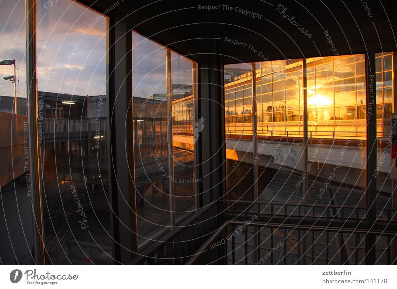 Sun House (Residential Structure) Berlin Window Architecture Facade Construction site Manmade structures Frame Greenhouse Evening sun New building Glas facade