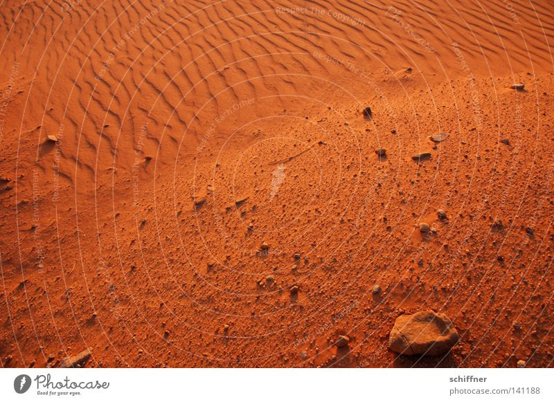sandy coast Desert Sand Beige Sandbank Earth Waves Drought Gale Wind Sanddrift Grass Tuft of grass Tracks Sunset Dry Infertile Burnt Blow Jordan Wadi Rum Stone