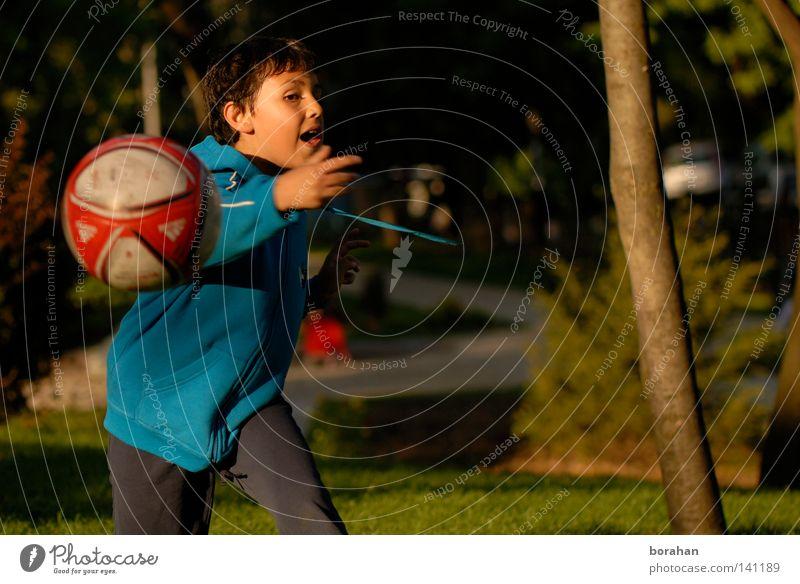 Ball & Children Human being Child Boy (child) Park Soccer Ball sports