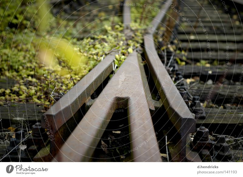 crossing Switch Road junction Blur Railroad tracks Wild Gloomy Lanes & trails Shabby Derelict uncontrolled growth
