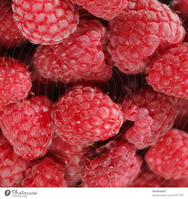 raspberries Raspberry Fruit sugar Red Fresh Juicy Vitamin Nutrition Background picture Pattern Sweet Vitamin-rich Aromatic Lemonade Refreshment Summer fructose