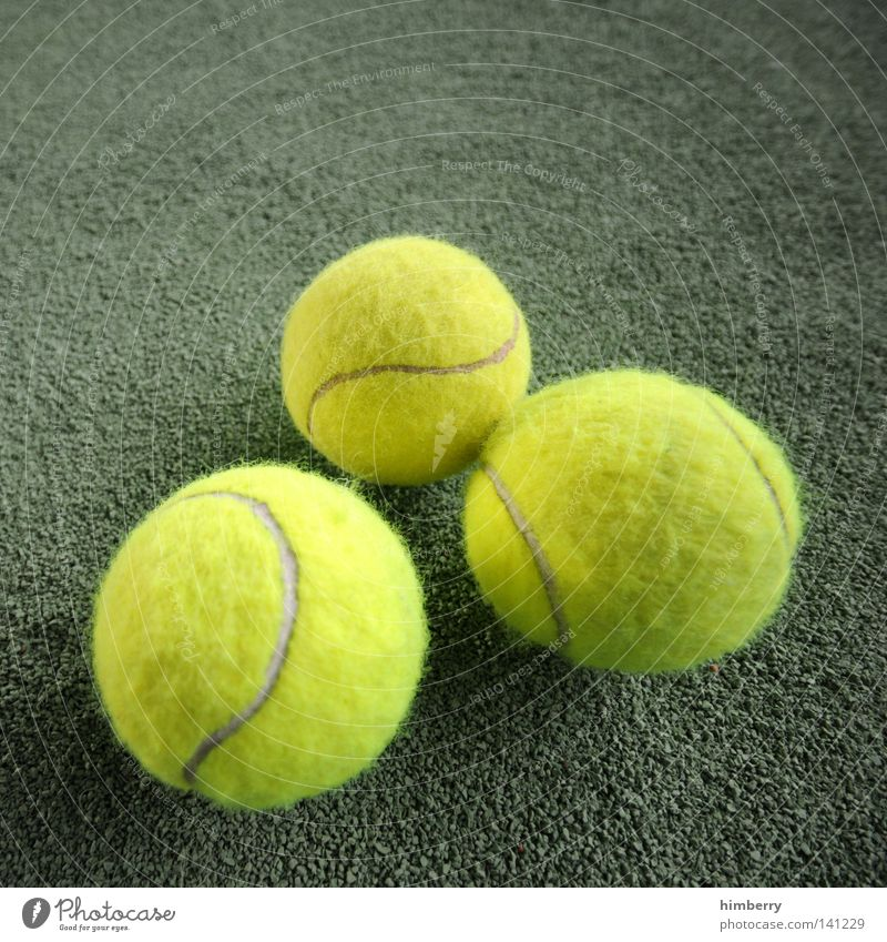 big tennis Tennis Places Tennis court Playing Sports Leisure and hobbies Fan Movement Line Playground Playing field Floor covering Ball sports Wimbledon Success