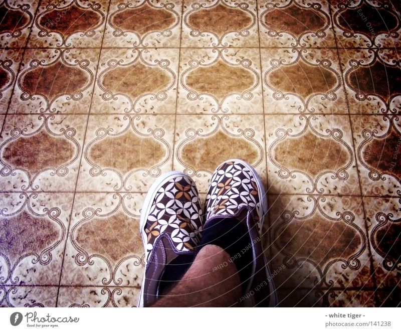 fancy shoes *2 Legs Stockings Footwear Blue Brown Black White Floor covering Checkered Adequate Colour photo Interior shot Pattern Day Bird's-eye view Ornament