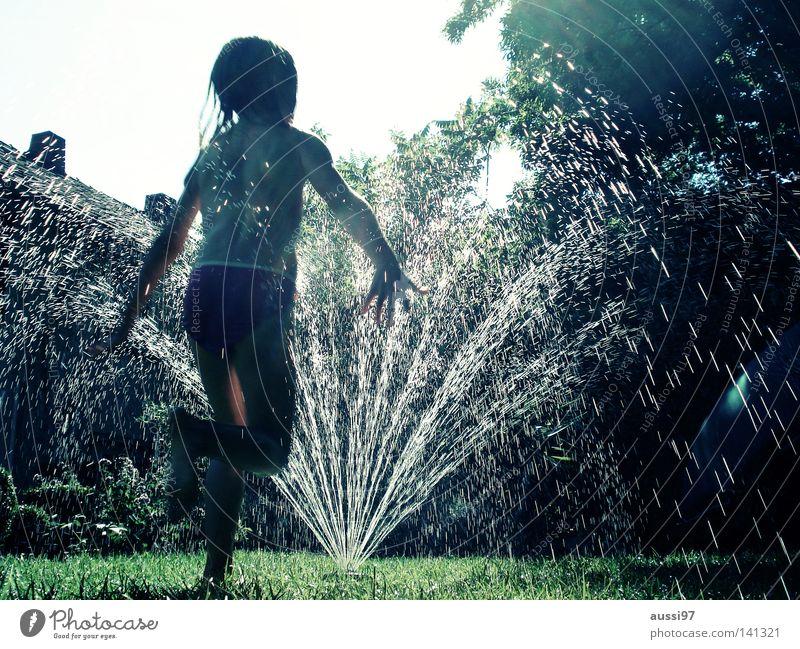 Water Sun Vacation & Travel Garden Park Pure Summer vacation Garden hose Lawn sprinkler