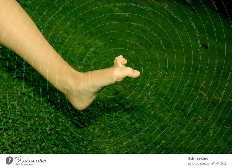 Joy Summer Flower Meadow Playing Grass Garden Legs Feet Power Field Flat (apartment) Force Catch Blade of grass Fight
