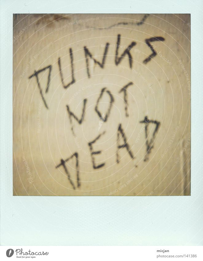 HH08.2 - Dead's not Punk! Punk rock Death Figure of speech Wall (building) Wall (barrier) Polaroid Paper Analog Brown Characters Typography Handwriting Graffiti