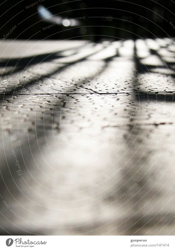 Stone Mysterious Sidewalk Hide Traffic infrastructure Paving stone Promenade Grating Invisible