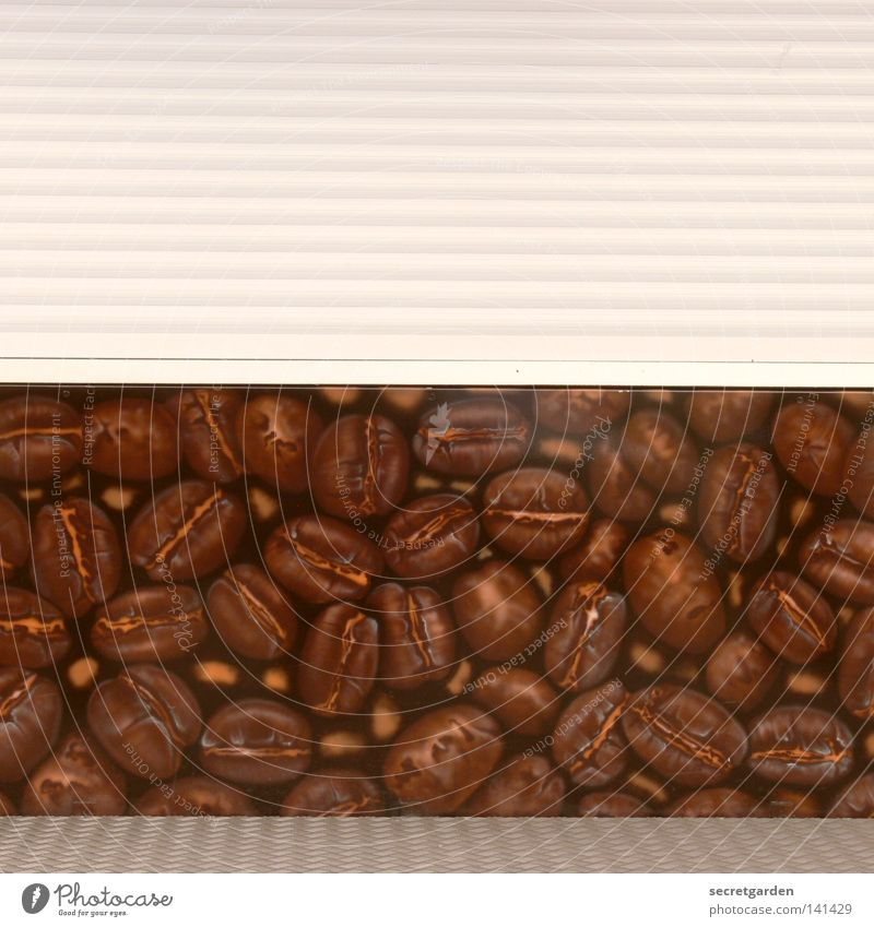 [HH08.2] dead pants with coffee beans Stalls and stands Fairs & Carnivals Goof off Closed Café Beans Coffee bean Pattern Wooden board Roller shutter Serve Sell