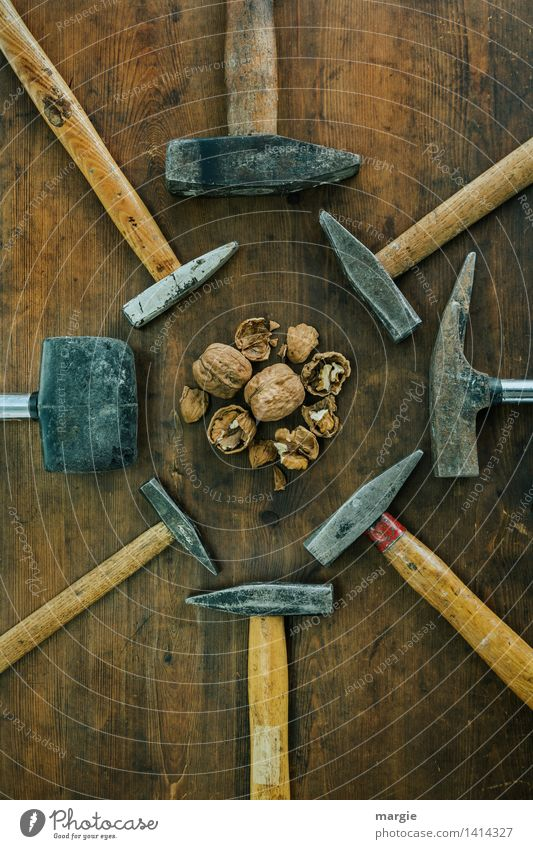 Separation of powers: different hammers arranged around walnuts in portrait format Food Organic produce Vegetarian diet Nutshell Nutcrackers Craftsperson Tool