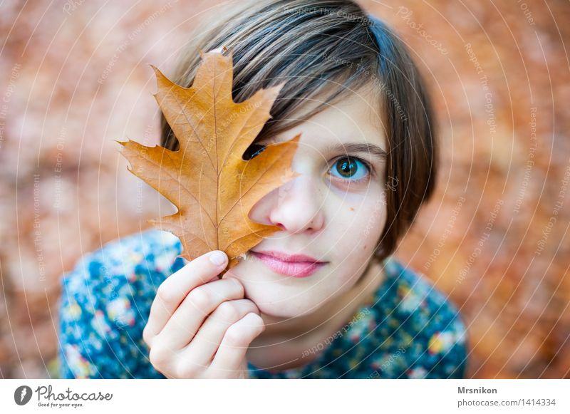 autumn Human being girl Infancy Youth (Young adults) Life 1 8 - 13 years Child Autumn Beautiful weather already Autumnal Autumn leaves flaked Deciduous forest