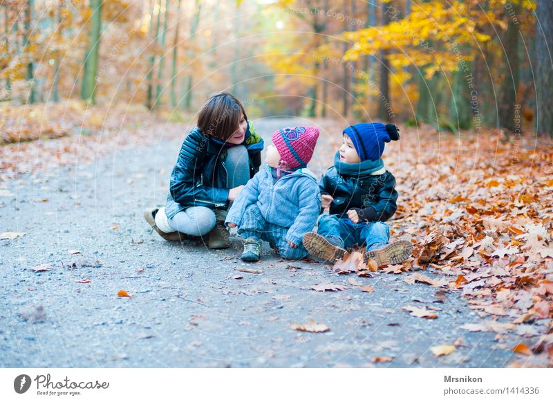 Human being Child Youth (Young adults) Girl Forest Autumn To talk Lanes & trails Boy (child) Family & Relations Group Infancy Sit Happiness Baby