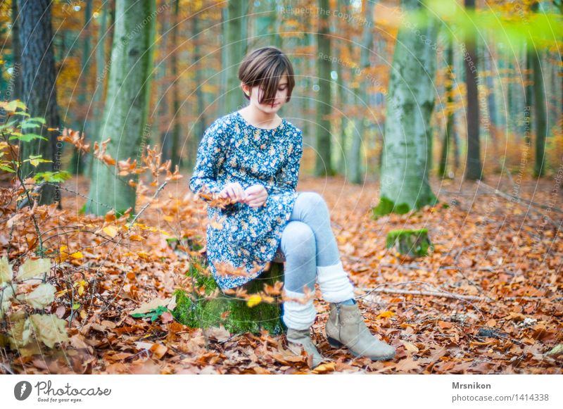 Human being Child Youth (Young adults) Beautiful Girl Forest Autumn Think Infancy Sit Wait Tree trunk Dress 8 - 13 years Autumn leaves Autumnal