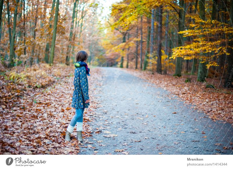 Human being Child Youth (Young adults) Loneliness Calm Girl Cold Autumn Feminine Hiking Infancy Wait Dress 8 - 13 years Autumn leaves Autumnal