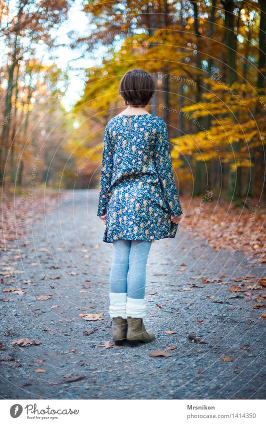 waiting Human being Feminine Child Girl Infancy Youth (Young adults) Life 1 8 - 13 years Natural Loneliness Individual Wait Retirement Looking Autumn Autumnal