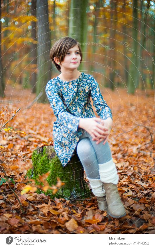 autumn forest Human being Child Girl Infancy Youth (Young adults) Life 1 8 - 13 years Autumn Forest Looking Sit Wait Autumnal Autumn leaves Cuffs or leggings