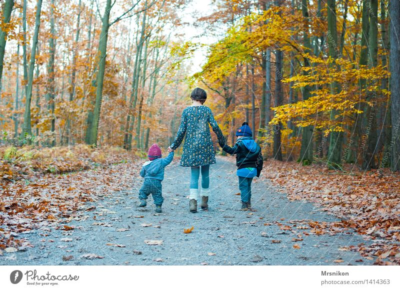 Human being Child Nature Joy Girl Forest Boy (child) Happy Family & Relations Going Together Infancy Walking Baby 3 8 - 13 years