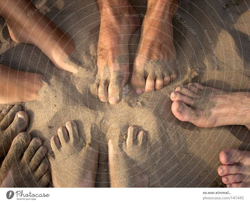 Vacation & Travel Summer Ocean Joy Sand Going Feet Friendship Masculine Skin Arm Walking Multiple Wet Communicate Circle