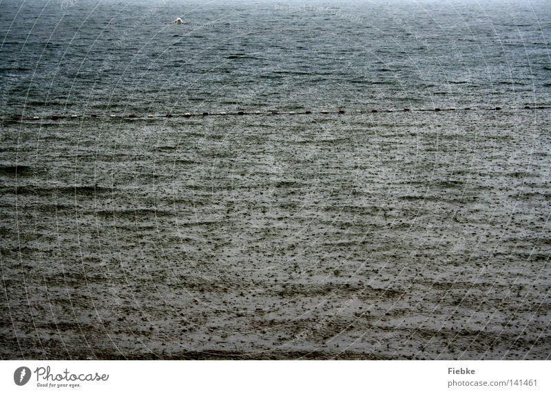 Water Sky Ocean Beach Autumn Gray Lake Rain Coast Waves Weather Wet Drops of water Dangerous Break
