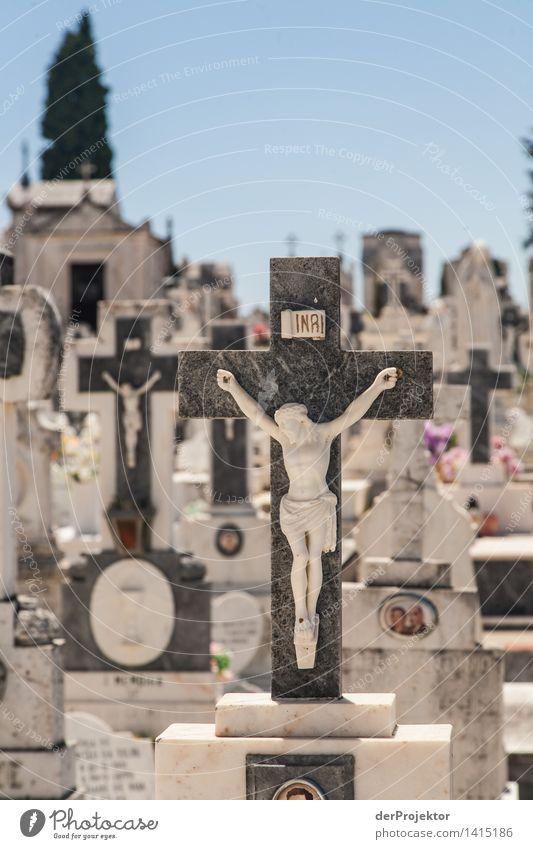 Vacation & Travel Sadness Emotions Berlin Death Tourism Trip Eternity Grief Trust Landmark Monument Christian cross Tourist Attraction Crucifix Concern