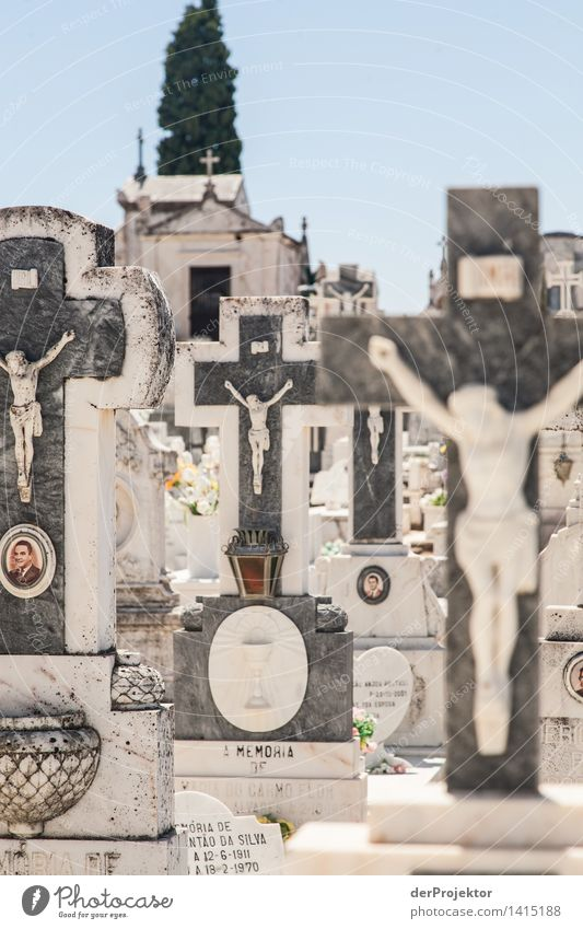 Jesus, exposed to the midday heat Vacation & Travel Tourism Trip Outskirts Tourist Attraction Sadness Concern Grief Death Lovesickness Alentejo Cemetery
