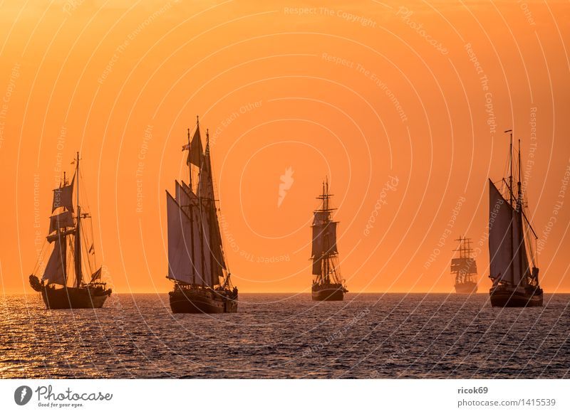 Sailing ships at the Hanse Sail Relaxation Vacation & Travel Tourism Water Clouds Baltic Sea Ocean Navigation Maritime Yellow Red Romance Idyll Windjammer