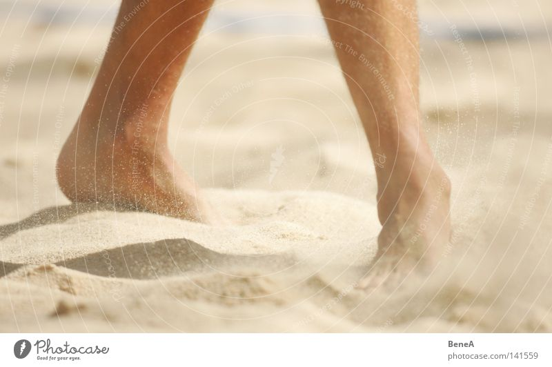 Vacation & Travel Man Summer Relaxation Ocean Calm Joy Beach Legs Hair and hairstyles Feet Going Bright Sand Contentment Earth