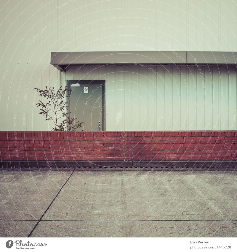 City Plant Red Loneliness Wall (building) Architecture Sadness Building Wall (barrier) Gray Stone Line Facade Metal Door Bushes