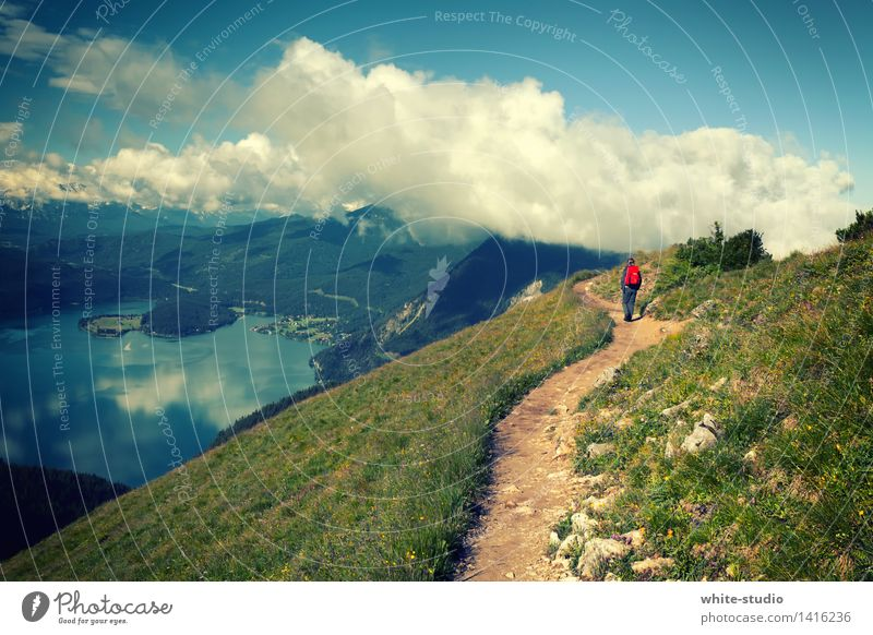 Into the clouds! Sports Fitness Sports Training Climbing Mountaineering Sportsperson Hiking Human being Feminine Young woman Youth (Young adults) Woman Adults