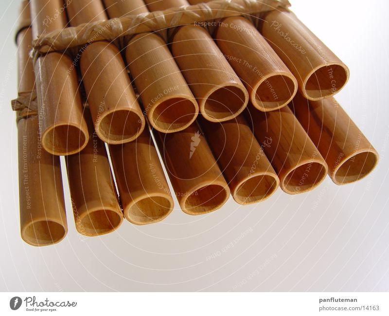 zampona Flute Panpipe Macro (Extreme close-up) Close-up Musical instrument Bamboo stick