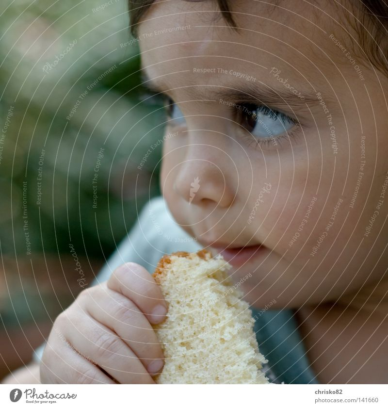 Child Summer Joy Relaxation Eyes Playing Boy (child) Lanes & trails Laughter Think Eating Dream Nutrition Fingers Sweet Observe