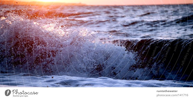After work ... Ocean Baltic Sea Gale Wind Wind speed Sun Sunset Algae Noise Surf Waves Coast Sand Beach Relaxation Kiel Schleswig-Holstein Evening To enjoy
