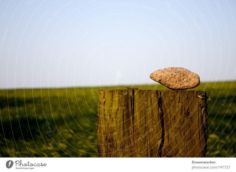 Sky Green Loneliness Far-off places Stone Field Horizon Border Brandenburg Wooden stake