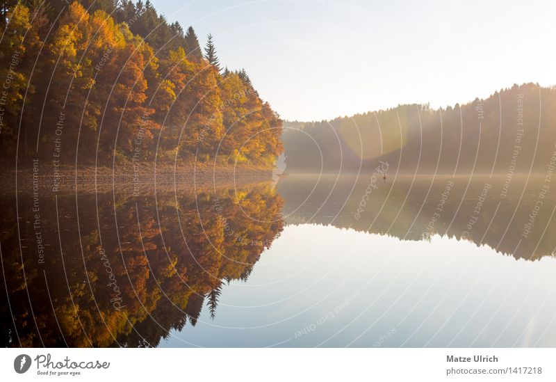Forest lake 1 Environment Nature Landscape Water Sky Sun Sunlight Autumn Beautiful weather Hill Lakeside Agger Reservoir Agger dam Calm Mirror image