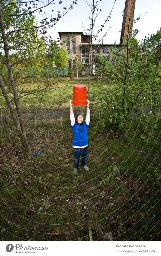 Human being Man Nature Tree Search Success Posture To hold on Hat Cap Cup (trophy) Lift Trash container Bucket Stretching Field