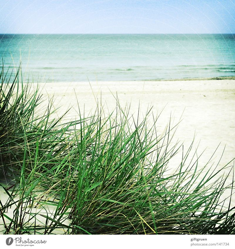 Water Sky Ocean Blue Beach Vacation & Travel Calm Far-off places Sand Coast Weather Horizon To go for a walk Beach dune Baltic Sea Darss