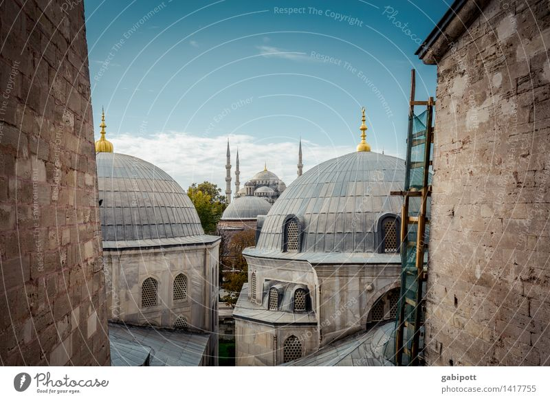 Believe and let believe! Tourism Trip Adventure Far-off places Sightseeing City trip Istanbul Turkey Capital city Downtown Old town Church Dome