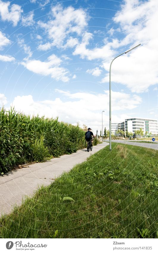 Human being Sky Sun Green Blue City Summer Clouds Street Meadow Style Lanes & trails Building Bicycle Field Transport