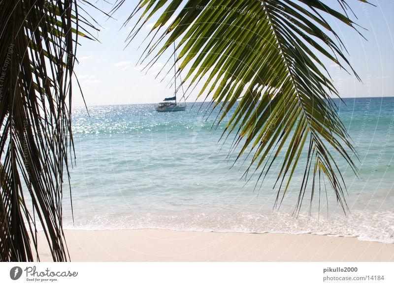 Ocean Beach Vacation & Travel Sand Watercraft Contentment