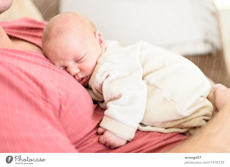 favourite slumbering place Human being Masculine Feminine Baby Man Adults Father Family & Relations 2 0 - 12 months 30 - 45 years Lie Sleep Small Brown Red